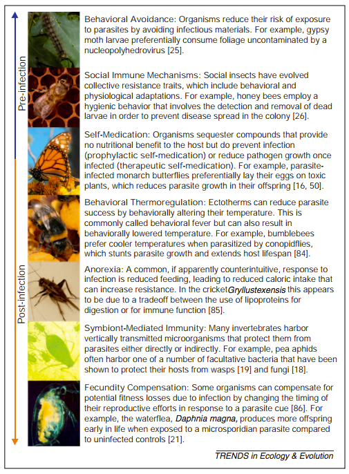 . Examples of non-immunological defense. The extent to which nonimmunological defense influences host–parasite dynamics, varies among individuals, and imposes costs differs among defenses and study systems. In general, it is important to demonstrate that a trait is adaptive for a host and is not a mechanism of parasite manipulation [83] before it can be considered to be a nonimmunological defense. Other physiological traits, such as feeding rate [23], might evolve as a consequence of parasite pressure, but are not the focus here because they are not active responses of individuals to parasitism. Photographs, from top to bottom, by A. Hunter, R. Naylor, E. Sternberg, P. Schmid-Hempel, S. Adamo, T. Barribeau, and T. Little.  Published in TREE